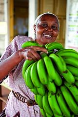 Rebecca Njoroee pomaga w układania bananów w centrum usług rolniczych w Makuyu w Kenii. (Makuyu, Kenya, 2011). Zdj. Gates Foundation, CC BY-NC-ND 2.0