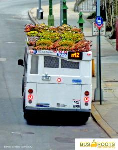 Fot. Marco Castro. Autobus z projektu Boos Roots Marco Castro krazy po ulicach Nowego Jorku