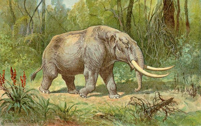 Mastodont - jeden z gatunków mamuta.