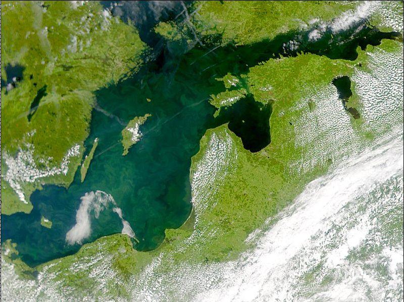 Zdjęcie NASA przedstawia zakwit fitoplanktonu na Morzu Bałtyckim w 2001 roku. Źródło Wikipedia. DP