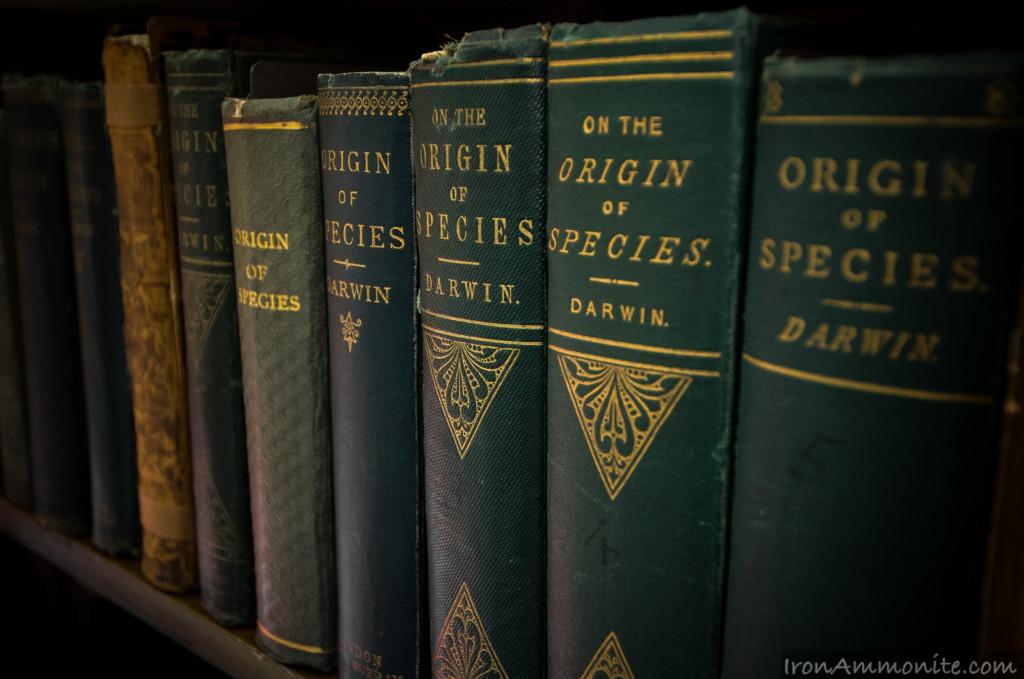 """""""O powstawaniu gatunków"""" w biblioteczce w byłym domy a obecnie Muzeum Darwina w Londynie, fot.  Paul Williams CC BY-NC 2.0"""