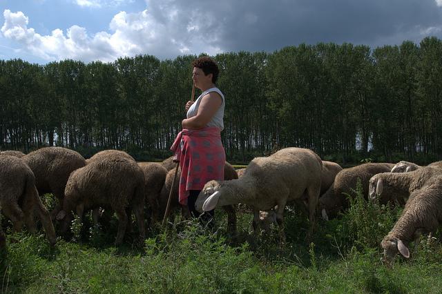 Serbska rolniczka. Morovic, rok 2009. Aut. Rural women, CC BY-NC-SA 2.0