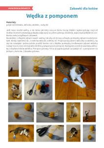pakiet - 02-17 - Dzień kota16
