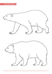 pakiet - 02-27 - Dzień Niedźwiedzia Polarnego21