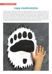 pakiet - 02-27 - Dzień Niedźwiedzia Polarnego22