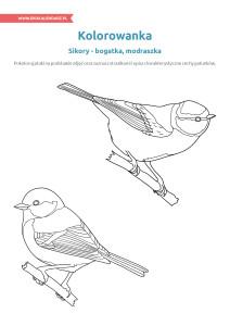 pakiet - 04-01 - Dzień Ptaków16