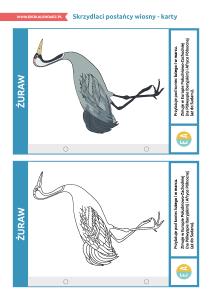 pakiet-05-12-Światowy-Dzień-Ptaków-Wędrownych-karty_Strona_02