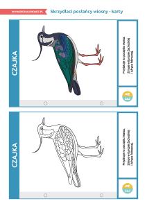 pakiet-05-12-Światowy-Dzień-Ptaków-Wędrownych-karty_Strona_04