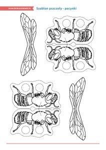 pakiet-08-08-Dzień-Pszczół_Strona_27