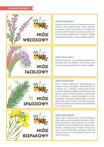 pakiet-08-08-Dzień-Pszczół_Strona_54