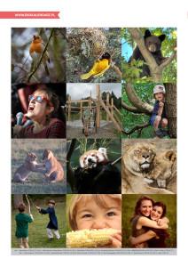 pakiet - 10-04 - Światowy Dzień Zwierząt14