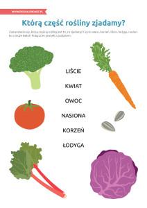 pakiet - 10-16 - Światowy Dzień Żywności19