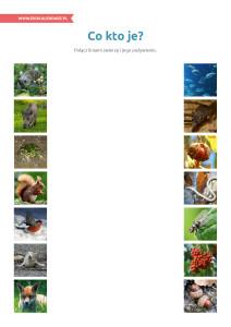 pakiet - 10-16 - Światowy Dzień Żywności21