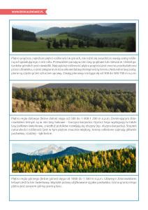 pakiet - 12-11 - Międzynarodowy Dzień Terenów Górskich12