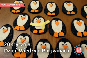 pingwin5