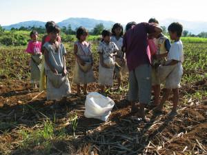 Dzieci pracujące na plantacji w Bacolod (Filipiny) podczas wysiewu nasion.  fot.  Joseph Fortin/MOP© CC by-nc-nd 2.0
