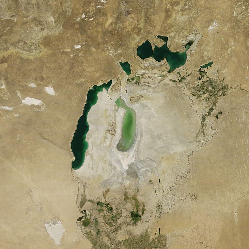 Jezioro Aralskie w 2011 roku. Czarna linia oznacza linię brzegową z lat 60. XX w. Fot. NASA